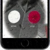 Местоположение датчика контакта с водой у всех iPhone